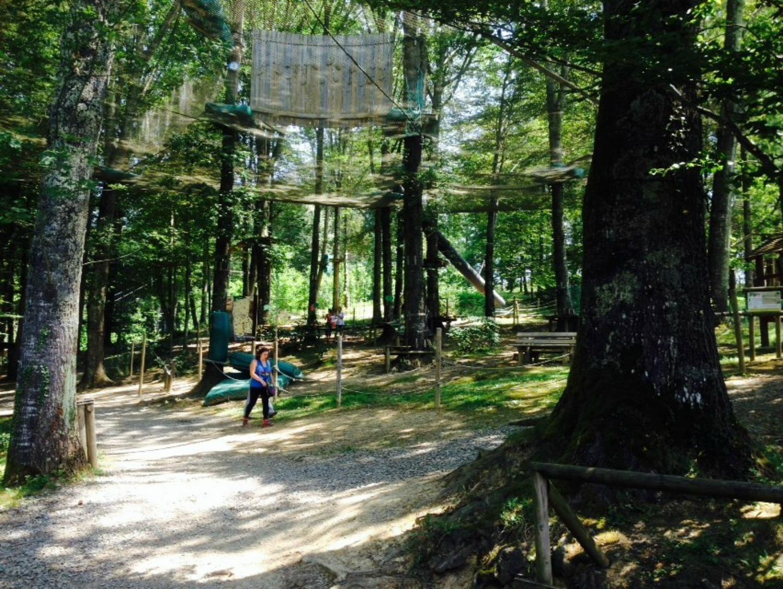 aventure-parc-parc-loisirs-aramits-bearn-64 © aventure parc aramits