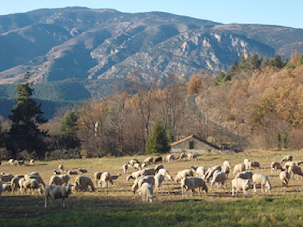 © © Communauté de Communes Canigou Val Cady