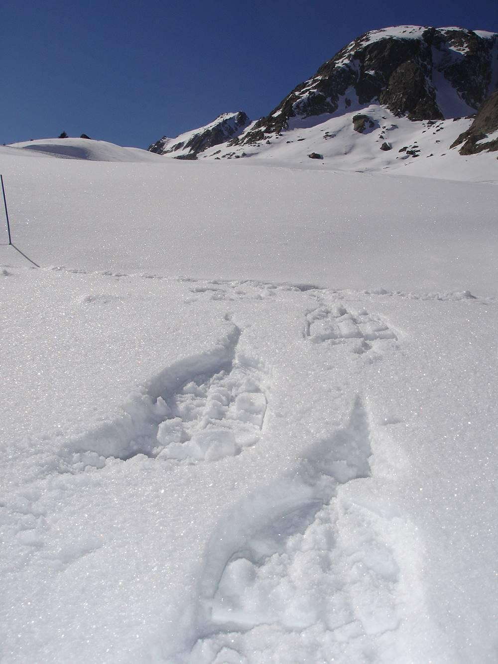 ESF (Ecole de ski français) © ESF (Ecole de ski français)