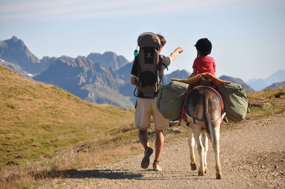Hiking with mountain donkeys outings © © Marie Dauphin