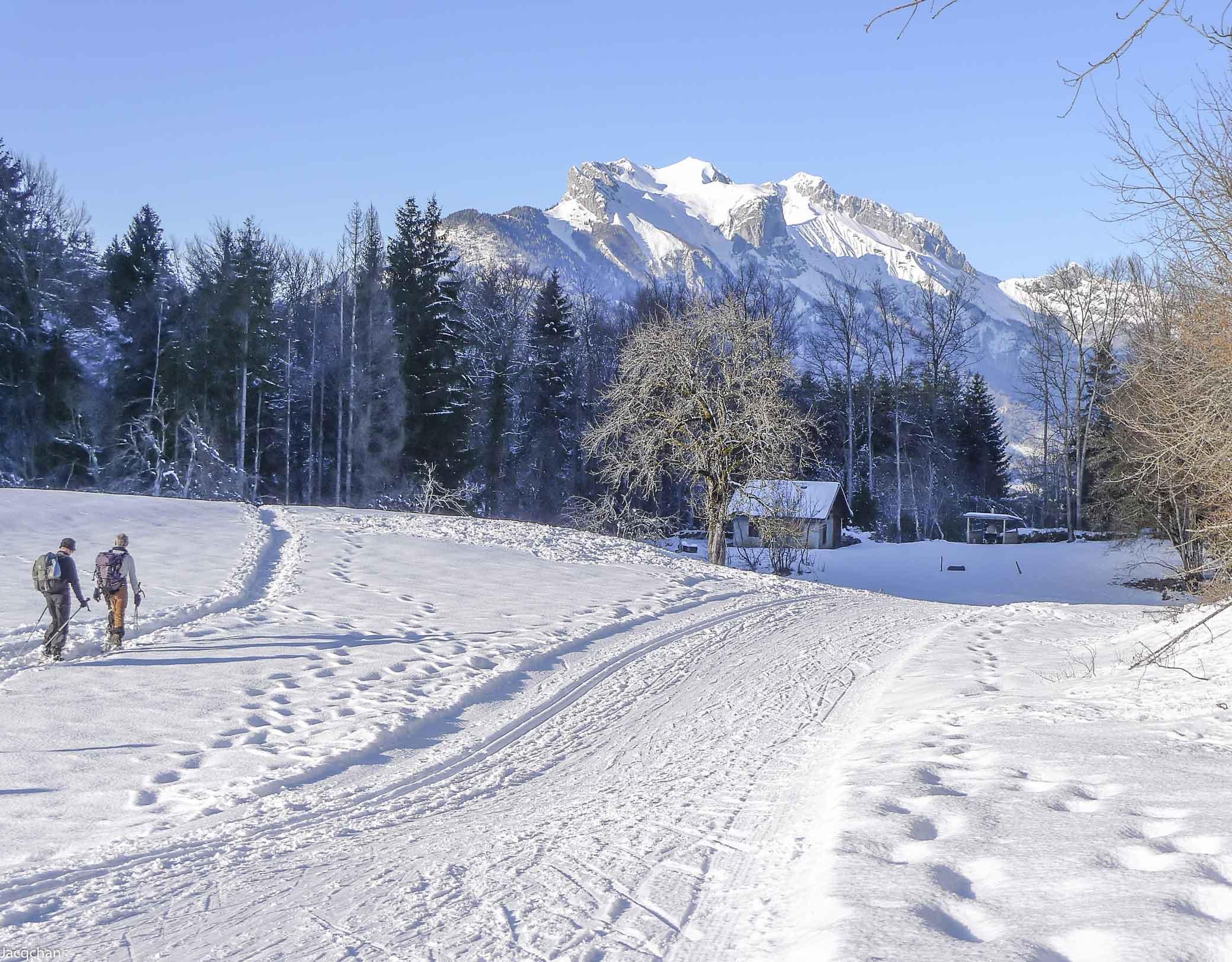 Seythenex Val de Tamié ski nordique hiver © Numérica photo club