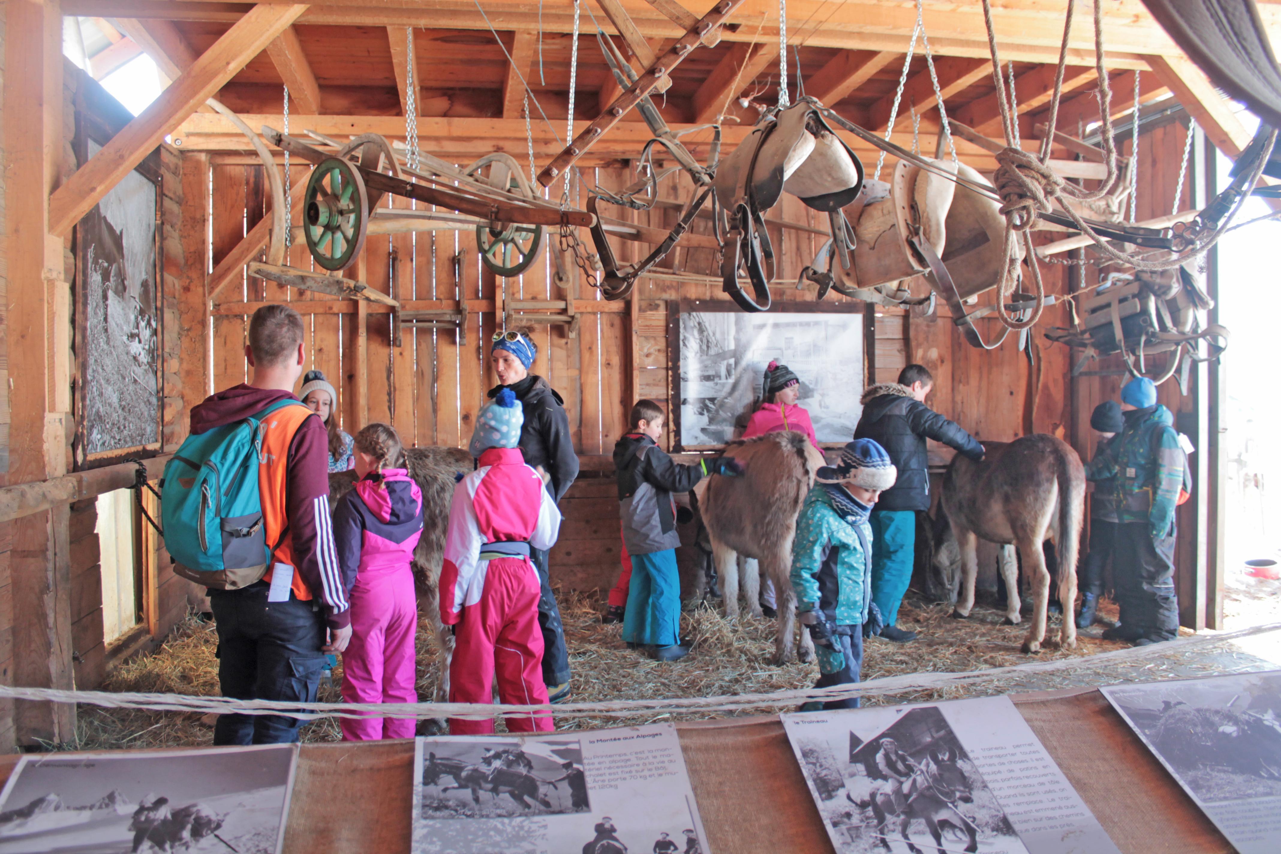 Visite groupe - Ferme des ânes © Office de Tourisme Saint Jean d'Arves - Les Sybelles